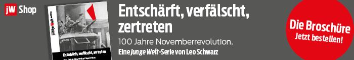Broschüre Novemberrevolution