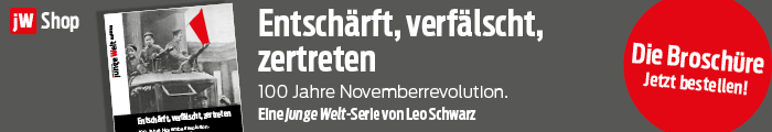 jW-Shop, Broschüre Novemberrevolution